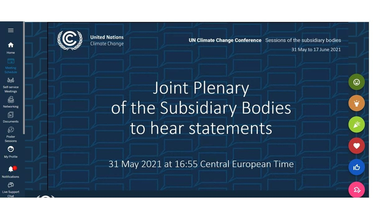 Subsidiary Bodies Title Slide