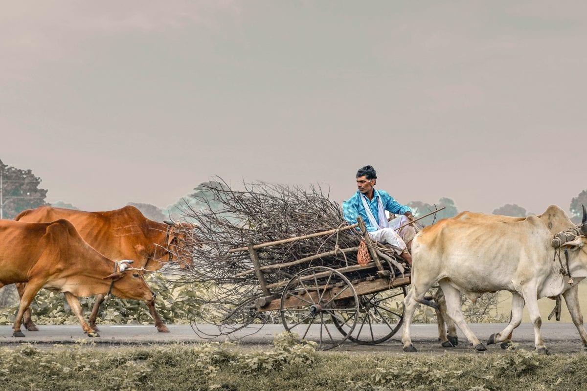 Photo by Karan Mandre on Unsplash